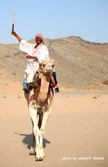 (alsharif ahmad) Tags: camel