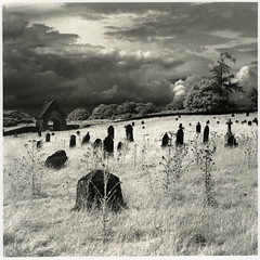 Curragh Graveyard, Kildare, Ireland (Print) (Martins Photo Scrap Book) Tags: ireland graveyard rollei print ir infrared kildare curragh ir400