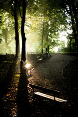 Sun rays @ Sonnenborgh Park Utrecht (lambertwm) Tags: light mist holland reflection misty fog backlight bench licht haze utrecht nebel lumire foggy thenetherlands  sunrays nebbia paysbas niebla brouillard luce tegenlicht sonnenschein  zonnestraal godrays reflectie nevoeiro    zonnestralen zonneschijn  raggidelsole rayonsdusoleil gne   strahlendersonne wiatosoneczne