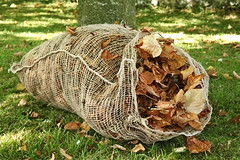 Leaf Sacks