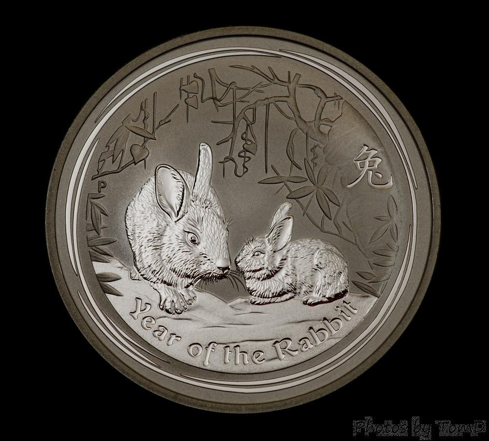2011 Silver Rabbit v2