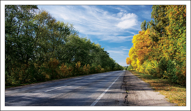 Autumn Road 3