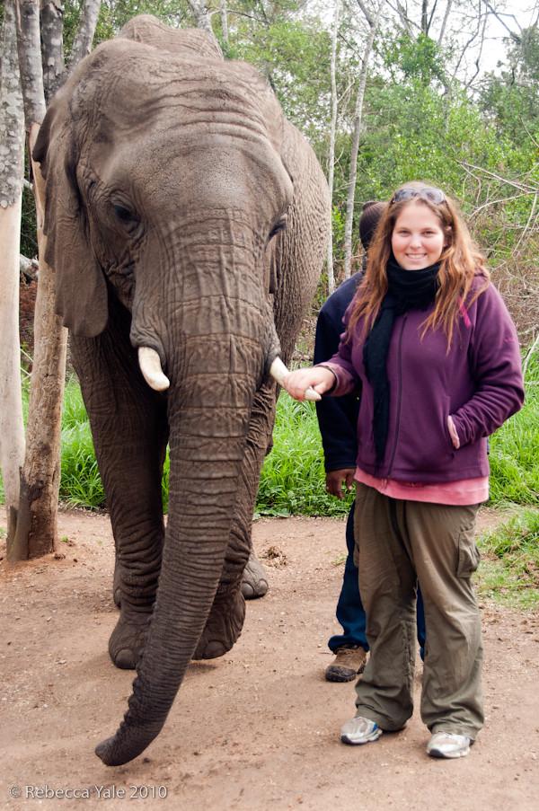RYALE_Elephant_Sanctuary_12