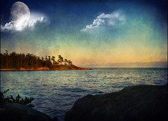 Timeless sea breezes