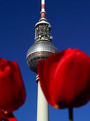Fernsehturm (Jonny__B_Kirchhain) Tags: berlin germany deutschland torre alemania fernsehturm allemagne germania televisiontower telespargel  berlinmitte tourdetlvision   torredetelevisin