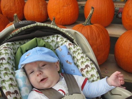 KFP with Pumpkins - 1