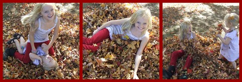 Jilly in the leaves