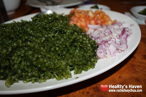 seaweed salad dampa