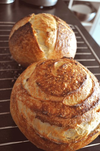 home made Sourdough bread recipe easy