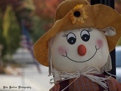 Autumn Smiles (whatUthinkin) Tags: autumn trees usa flower fall colors smile hat leaves yellow mouth pumpkin nose eyes dof bokeh flag scarecrow smiles straw indiana dancer pole american sunflower change elkhart wakarusa holloween goshen