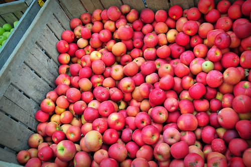 the Apple bins