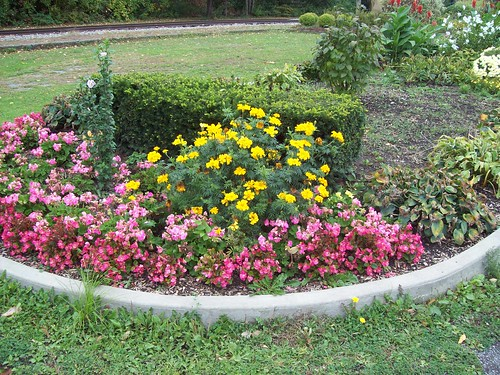 OPRR XIV: Flower beds