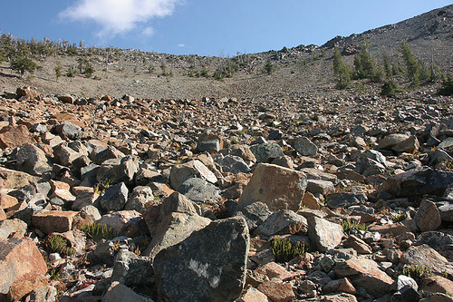 Serpentine Rocks along Longs Pass Trail