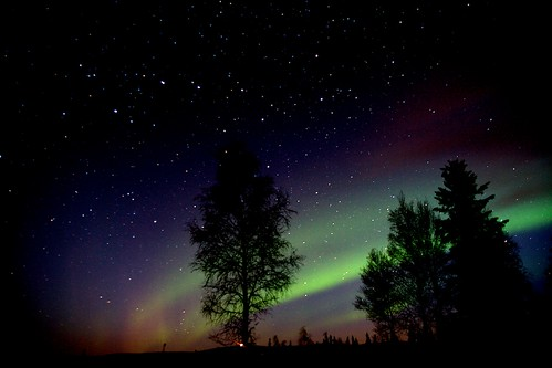 Aurora 15 October 2010 by mmmavocado, on Flickr