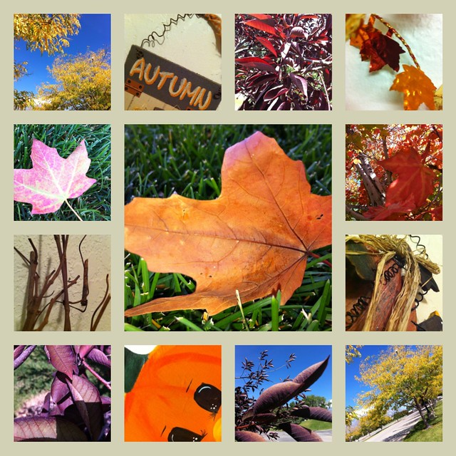 Fall4Collage