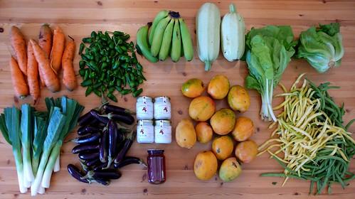 Mercado del agricultor Güímar 17 octubre 2010