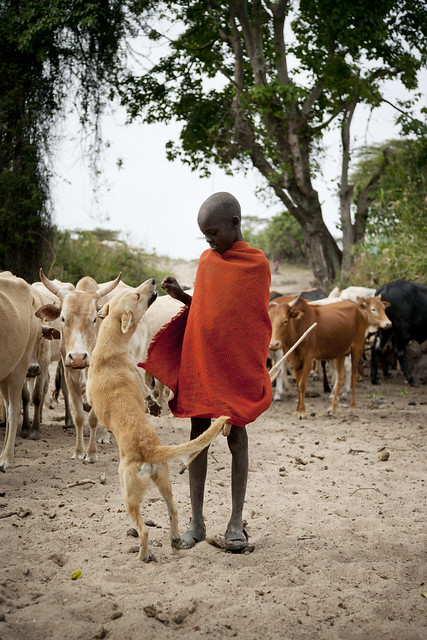 A young Masai warrior taking some down time with his trusty hound