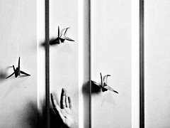 Fly With Me (Regan Norton) Tags: white black me lines paper three fly hand with crane fingers cranes reach oragami