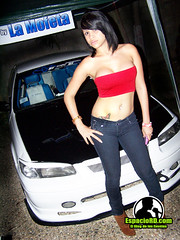 CarShow Gasoline