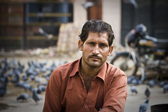 No Smiles (mctrent) Tags: india man blur bird smile shop happy store bokeh pigeon spice stall moustache jaipur rajasthan owner