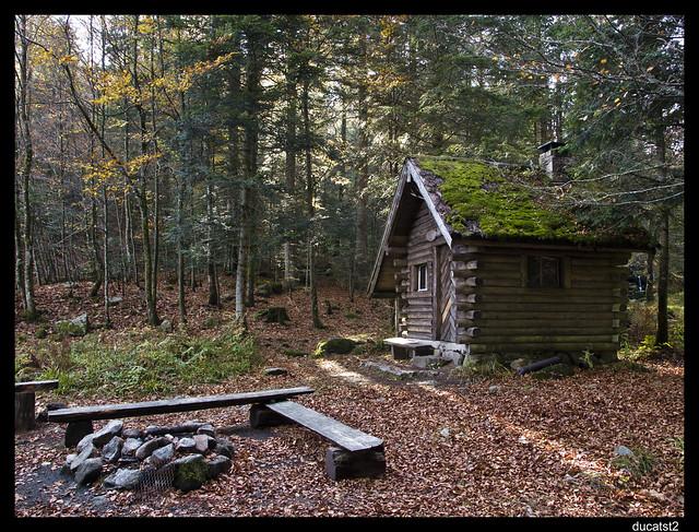 la cabane au fond du bois... 5095961359_0dd088dafd_z