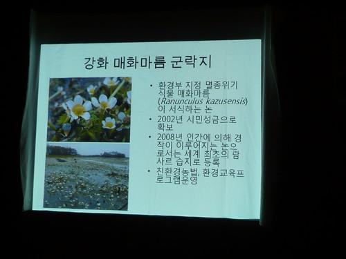 梅花藻棲地的介紹 孫秀如拍攝