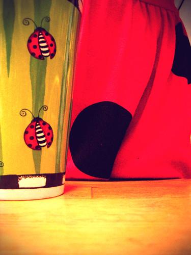 ladybug002