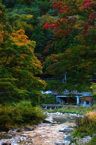 四万温泉 紅葉 2010/10/26 #shimaonsen