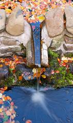Monteviot House Gardens-21 (davidmunro) Tags: autumn garden scotland dene monteviot
