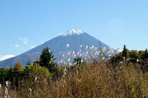 Monte Fuji - -133