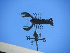 Lobster Weather Vane, La Jolla (cjbphotos1) Tags: ocean california seaside sandiego lajolla lobster weathervane
