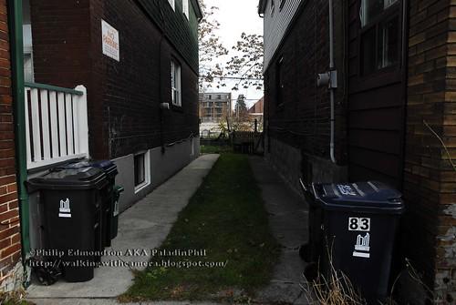 Grassy Alley
