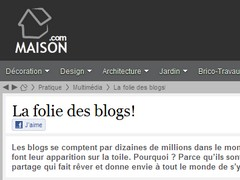 La folie des blogs