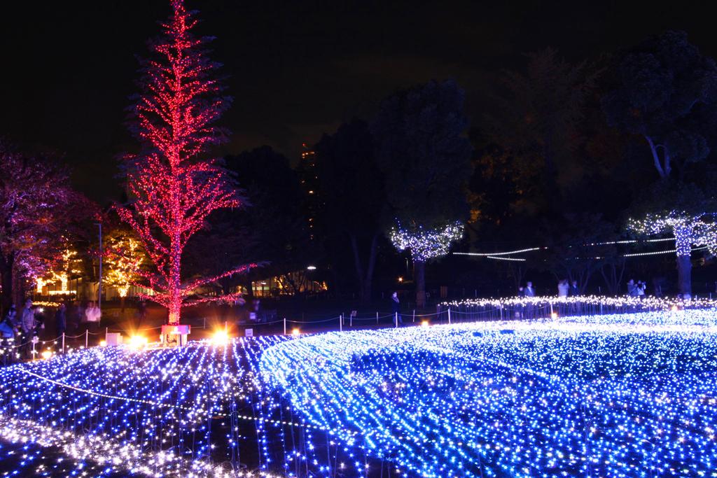 Tokyo-midtown Xmas illumination 2010 (4)