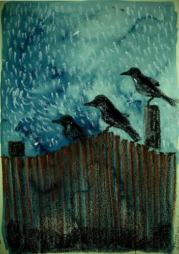 fences and raindrops copy