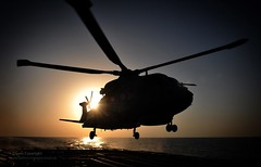 Royal Navy Merlin Helicopter Lands Onboard HMS Somerset Near Iraq (Defence Images) Tags: uk ship gulf aircraft military free somerset equipment helicopter merlin british frigate defense defence royalnavy type23 ffg type23frigate dukeclass hmssomerset hmmk1 820nas 820squadron