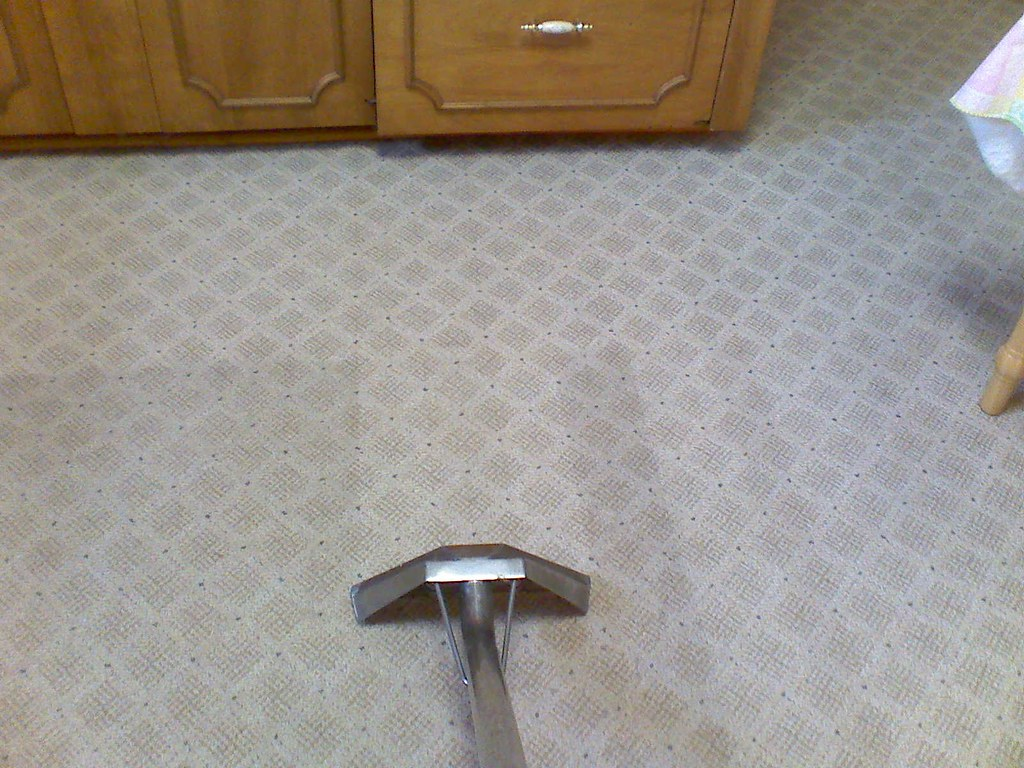 Carpet Cleaning Steam Extraction