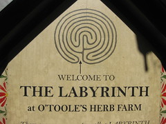 Welcome the the Labyrinth