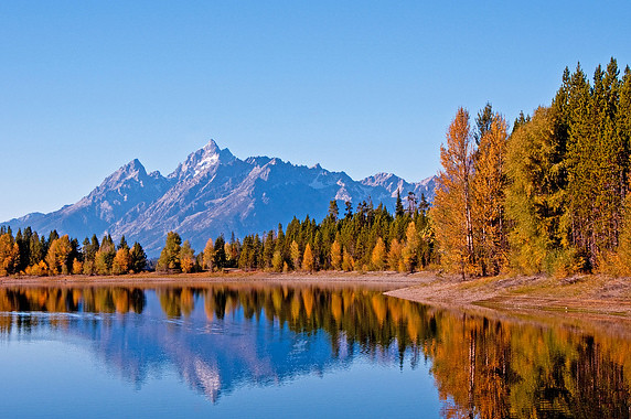 Fall in Teton