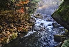 Enjoy the view from onsen at Kiyashiki (williamcho) Tags: new autumn landscape stream scenic shangrila onsen hotsprings kurokawa kiyashiki