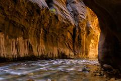 Awe Moment (sochhoeung) Tags: zionnarrows zionationalpark hikingthenarrows hikingutah nationalpark nps gopark landscapes slotcanyon canyon river flowingriver southernutah weekendtrip canyonwalls rocks pebbles walkingthoughwater wa