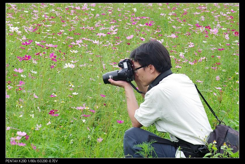 2010/06/26 Kiron 105/2.8 Macro 波斯菊田!