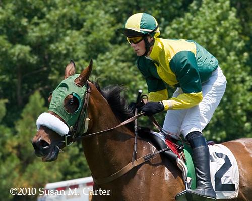 Darren Nagle, Coupe de Ville, steeplechase horse racing