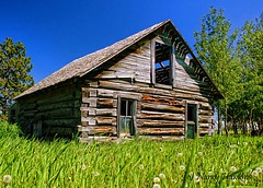 Weathered Memories.. (Nancy Hawkins) Tags: blue windows sky house green grass log decay structure delapitated weatherd