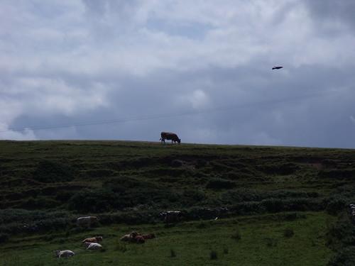moher - ireland