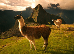 The Light of Ages (AndersonImages) Tags: pictures sunset peru southamerica inca ruins bravo photos landmarks empire andes prints machupicchu llamas sevenwonders michaelanderson lostcivilization