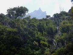 Sentier de montée Sud depuis Giannucciu : l'Uomu di Cagna