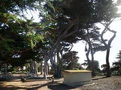 El Carmelo Cemetery (radargeek) Tags: california ca panorama pacificgrove elcarmelocemetery