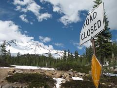 4769253116 d0fa036786 m Mt. Shasta