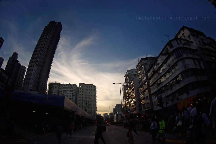 Sigma 8mm fisheye